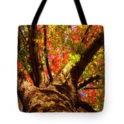 Colorful Autumn Abstract Tote Bag by James BO  Insogna