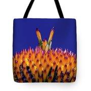 Coneflower Study Tote Bag by Betty LaRue
