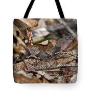 Copperhead 4 Tote Bag by Douglas Barnett