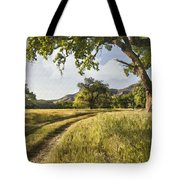 Country Road Tote Bag by Sharon Foster