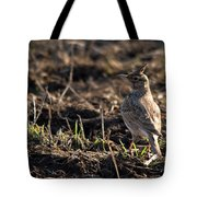 Crested Lark Tote Bag by Cliff  Norton
