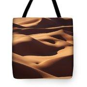 Curves Tote Bag by Ivan Slosar