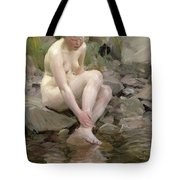 Dagmar Tote Bag by Anders Leonard Zorn