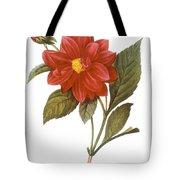 DAHLIA (DAHLIA PINNATA) Tote Bag by Granger