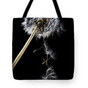 Dandelion loosing seeds Tote Bag by Garry Gay