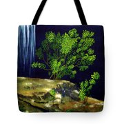 Dark Waters Tote Bag by Patricia Griffin Brett