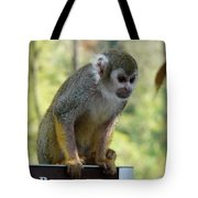 Deceptive Paradise Tote Bag by Valerie Ornstein
