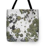 Detail Of Lichen On A White Rock Lake Tote Bag by Michael Interisano