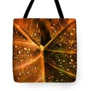 Dew Drops Tote Bag by Susanne Van Hulst