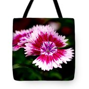 Dianthus Tote Bag by Rona Black