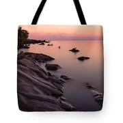 Dimming Of The Day Tote Bag by Mary Amerman