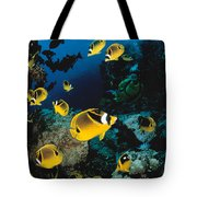 Diver And Butterflyfish Tote Bag by Dave Fleetham - Printscapes