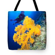 Diving, Australia Tote Bag by Dave Fleetham - Printscapes
