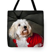 Dog Under Umbrella Tote Bag by Elena Elisseeva