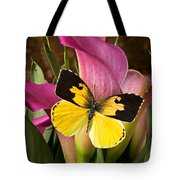 Dogface Butterfly On Pink Calla Lily  Tote Bag by Garry Gay