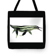 Dolichorhynchops Plesiosaur On White Tote Bag by Corey Ford