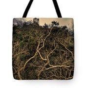 Dolwyddelan Castle Tote Bag by Meirion Matthias
