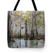 Down On The Bayou - Digital Painting Tote Bag by Carol Groenen