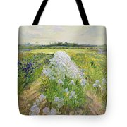 Down the Line Tote Bag by Timothy Easton