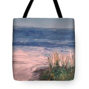 Down The Shore Tote Bag by Eric  Schiabor