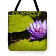 Droplets Tote Bag by Teresa Mucha
