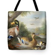 Ducks In A River Landscape Tote Bag by Jakob Bogdany