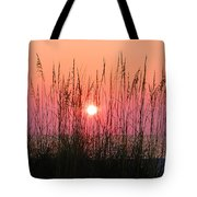 Dune Grass Sunset Tote Bag by Bill Cannon