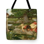 Echo and Narcissus Tote Bag by John William Waterhouse