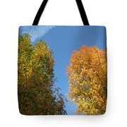 Equinox Tote Bag by James Barnes