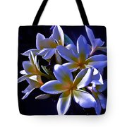Evening Glow Tote Bag by Gwyn Newcombe