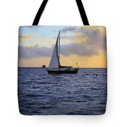 Evening Sail Tote Bag by Cheryl Young