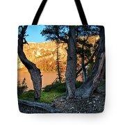 Everson Lake 2 Tote Bag by Leland D Howard
