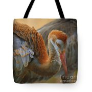 Evolving Sandhill Crane Beauty Tote Bag by Carol Groenen