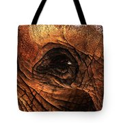 Eyes Through The Canyon Of Time Tote Bag by Wingsdomain Art and Photography