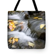 Fall Leaves In Rushing Water Tote Bag by Craig Tuttle