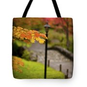 Fall Serenity Tote Bag by Mike Reid