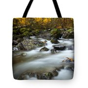 Fall Surge Tote Bag by Mike  Dawson