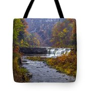 Falls Fishing Tote Bag by Mark Papke