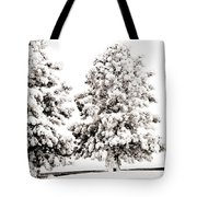 Family Of Trees Tote Bag by Marilyn Hunt