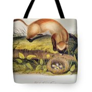 Ferret Tote Bag by John James Audubon
