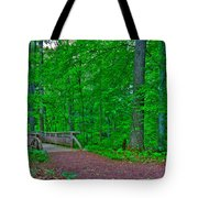Forest Walk Tote Bag by Kevin Hill