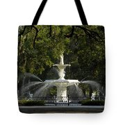 Forsyth Fountain 1858 Tote Bag by David Lee Thompson