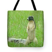 Foxy Tote Bag by Adele Moscaritolo