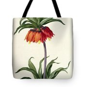 Fritillaria Imperialis Tote Bag by Pierre Joseph Redoute