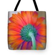 Funky Gerbera Tote Bag by Amanda Barcon