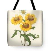 Galardia Tote Bag by Granger
