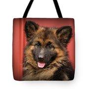 German Shepherd Puppy - Queena Tote Bag by Sandy Keeton