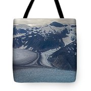 Glacial Curves Tote Bag by Mike Reid