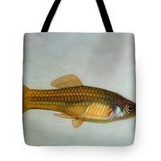 Go Fish Tote Bag by James W Johnson