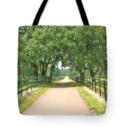 Going Home Tote Bag by Adele Moscaritolo
